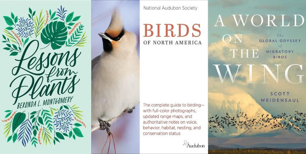 Check Out These 8 Spring Book Releases About Birds, Gardening And The Outdoors What Makes You Love Nature More!