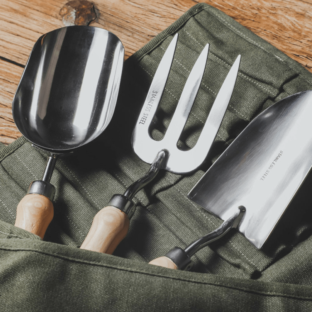 MUST HAVE GARDENING TOOLS TO PLANT SUCCULENTS!