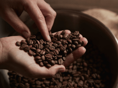 Are The Famous Coffee Grounds Good For Houseplants? The Striking Facts You've Missed In 2021