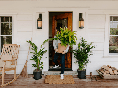 How To Bring Outdoor Plants Indoors During The Winter? Save Your Beloved Houseplants From The Freeze [2021]!
