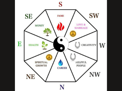 The Bagua In Feng Shui: The Amusing Ultimate Guide For Your Snake Plant Placement [2021]