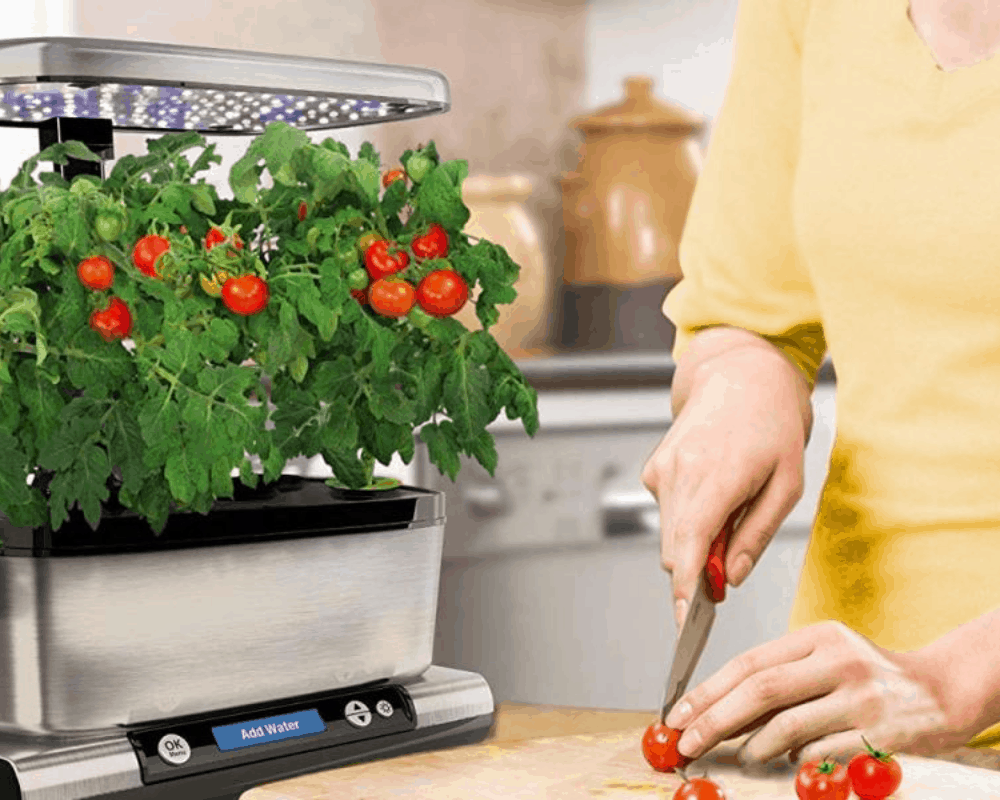 Choosing the Best Grow Light for Your Plant (2021)