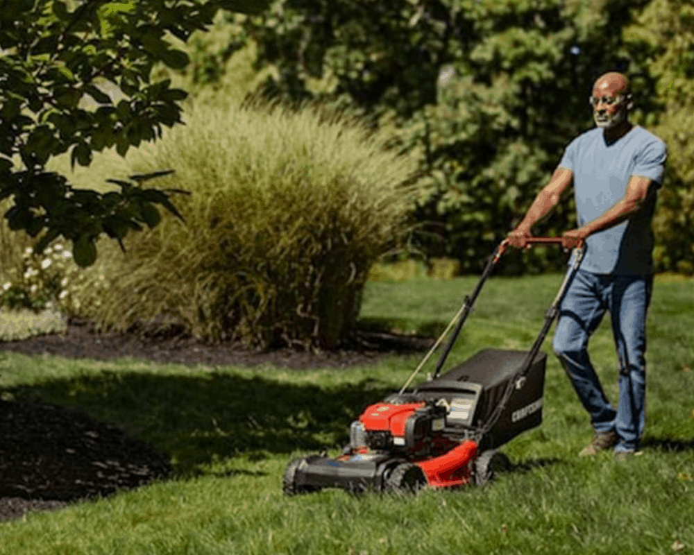 5 Best Lawn Mower for Gardening Business on Amazon