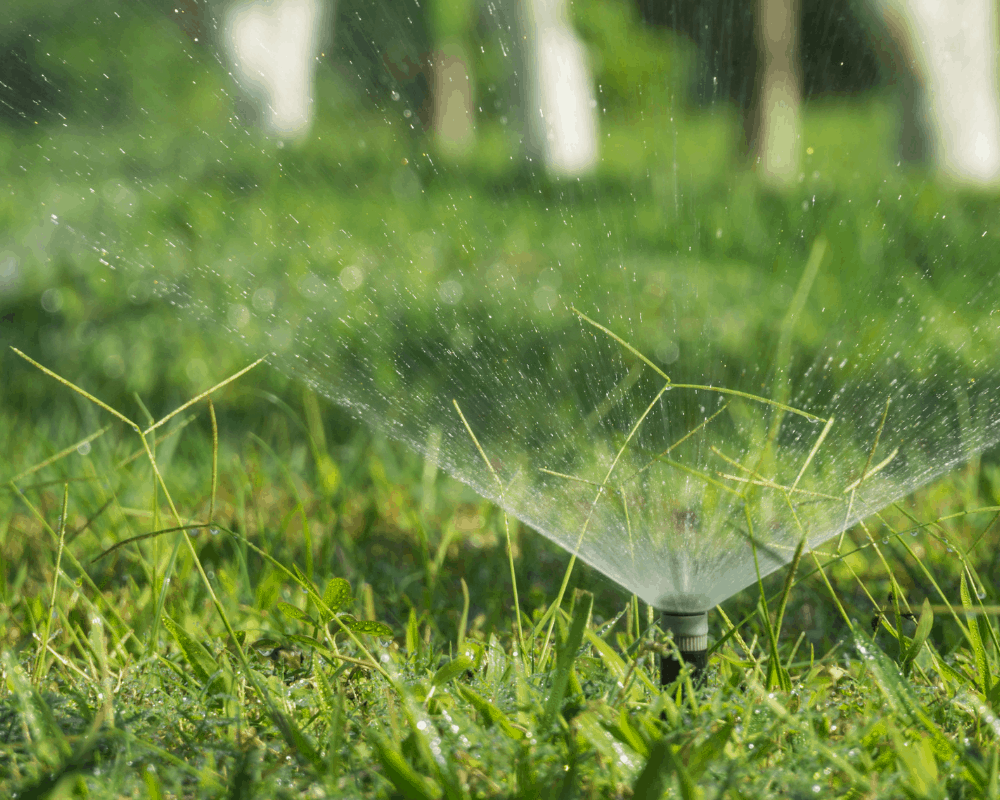 These 5 Lawn Sprinklers Keep Grass Looking Its Best