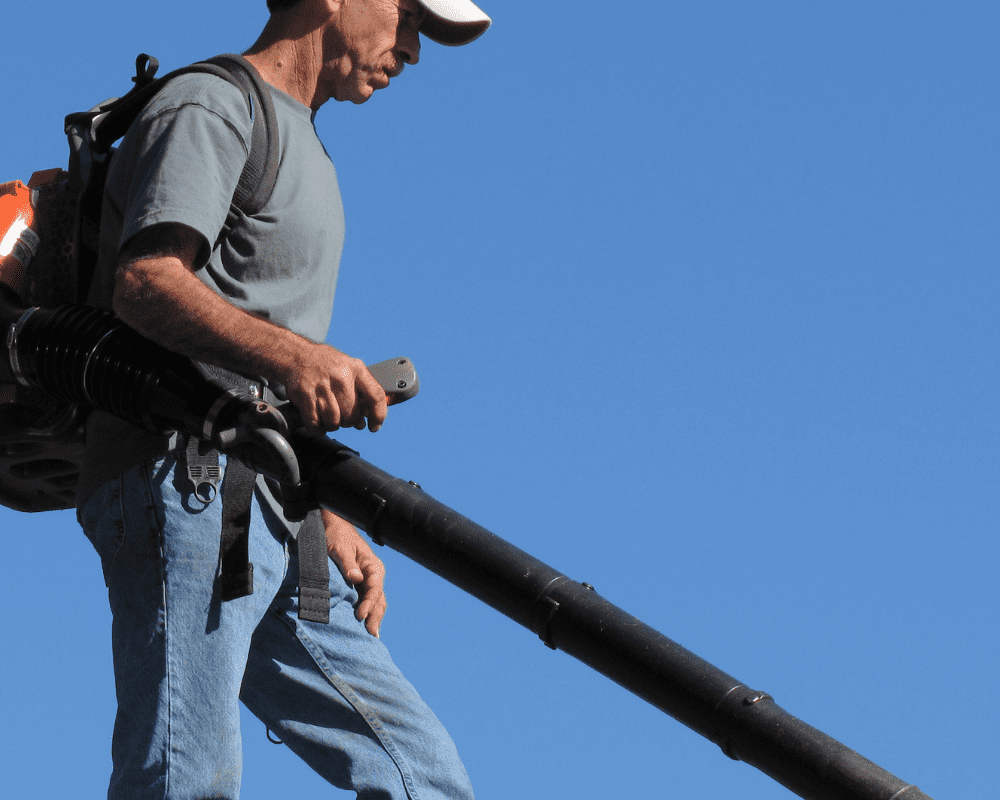 4 Best Backpack Leaf Blowers on Amazon to Clean Your Yard